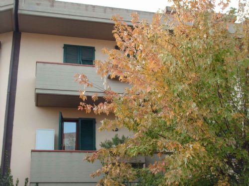 terratetto-certaldo-c2-agenzia-immobiliare-boccacciocase-1